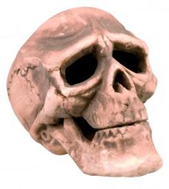 Trauriger Totenkopf Totenschädel Halloween Party-Deko beige 22x15cm