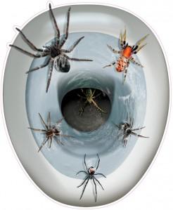 Spinnen-Sticker als WC-Sitz bunt 30,5x43,2cm