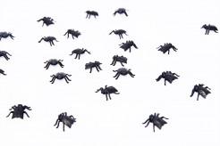 Tüte mit 24 Fliegen Tischdekoration Halloween schwarz