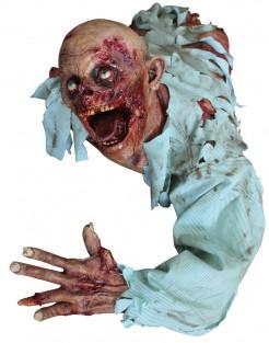 Grausige Halloween Zombie-Deko bunt