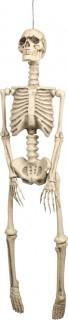 Skelett Dekorationen zum Aufhängen für Halloween beige 95 x 21 cm