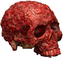 Verwesender blutiger Totenschädel Halloween Dekoration rot 20 x 15 x 10 cm