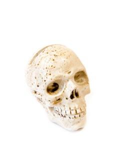 Halloween-Totenschädel mit Flecken weiss-braun 4,5x5,5cm