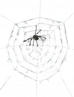 Riesiges Spinnennetz mit Spinne grau