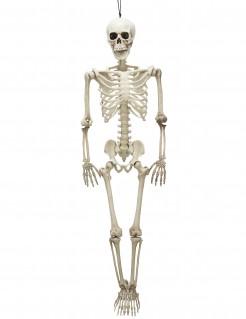 Bewegliches Skelett Halloween Party-Deko weiss 90 cm