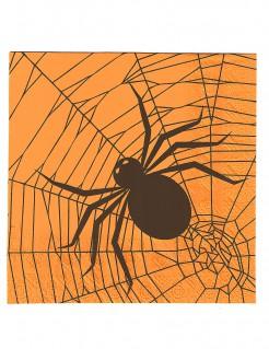 Halloween-Servietten Spinnen-Partyservietten 20 Stück orange-schwarz 16x16cm