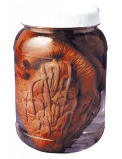 Eingelegtes Herz Schreckartikel Halloween Party-Deko bunt 14cm