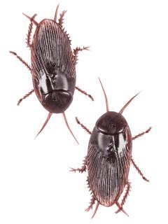 Kakerlaken Schreckartikel braun 2 Stück 6cm