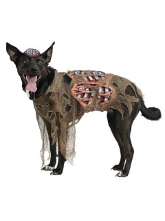 Zombie-Hund Halloween-Hunde-Kostüm grau-grün
