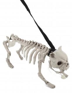 Skelett-Hund mit Licht und Sound Halloween Party-Deko beige 40x19 cm