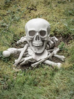 Schauriges Gebeine-Set Halloween-Deko Knochen und Schädel 14-teilig weiss