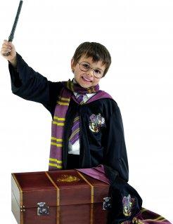 Harry Potter™-Kostümset für Kinder im Koffer schwarz-rot-gelb