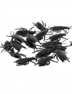 Eklige Kakerlaken Halloween-Partydeko 12 Stück schwarz 6cm