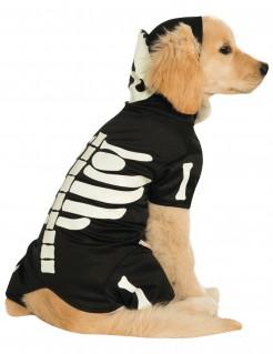 Nachtleuchtendes Skelett-Hundekostüm für Halloween schwarz-weiss