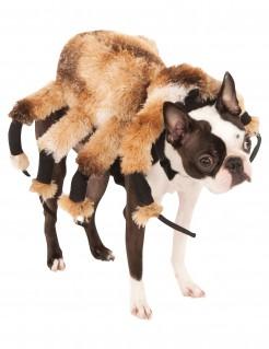 Gruselige Spinne Halloween-Hundekostüm beige-braun