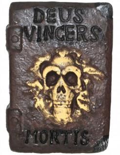 Hexen- oder Zaubererbuch braun 30x21cm