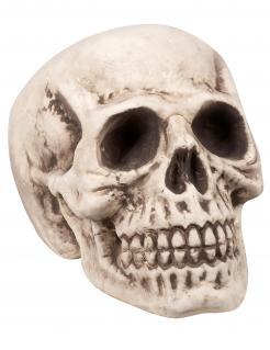 Schauriger Totenkopf Halloween-Deko beige 23 x 22 x 31 cm