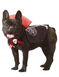 Vampir-Skelett Halloween-Kostüm für Hunde