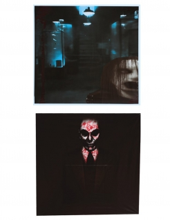Halloween-Fenster-Deko 2 Stück 45 x 45 cm
