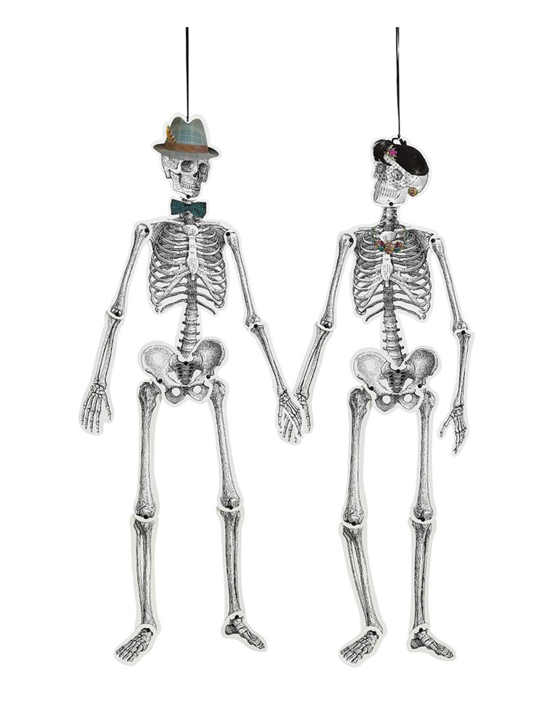 Berühmt Teile Des Skelettsystems Ideen - Menschliche Anatomie Bilder ...