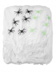 Riesen Spinnennetz weiss 150qm 500g