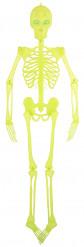 Nachtleuchtendes Deko-Skelett für Halloween gelb 150cm