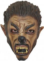 Wolf Maske für Teens Halloween Kostümaccessoire braun