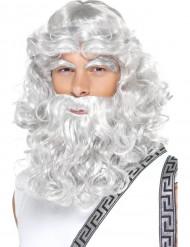 Zauberer Herren Perücke mit Bart für Halloween grau