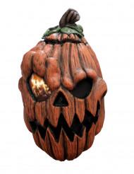 Animierte Kürbismaske Halloween Maske orange-schwarz