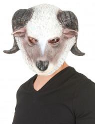Schafbock Halloween Latexmaske für Erwachsene grau-weiss