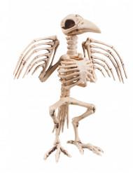 Skelett-Rabe Halloweendeko Gruseltier beige 32cm