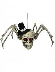 Skelettspinne mit Hut Halloweendeko weiss-schwarz-rot 23x30cm
