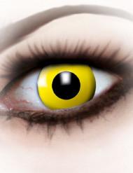 Kontaktlinsen Krähe gelb