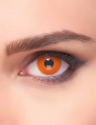 Kontaktlinsen orange