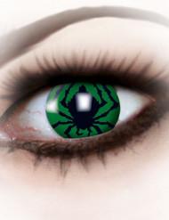 Kontaktlinsen Spinne grün-schwarz