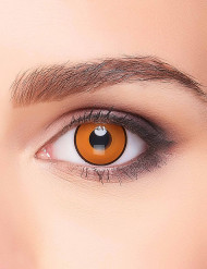 Krähenaugen Halloween-Kontaktlinsen Kostüm-Accessoire orange-schwarz