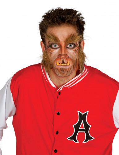 Werwolf-Augenbrauen und -Bart braun