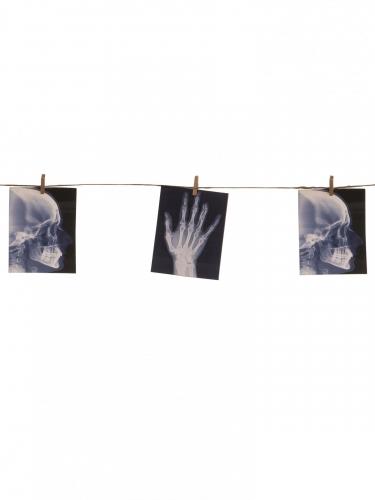 Röntgenbilder Girlande Halloween schwarz 160x16cm