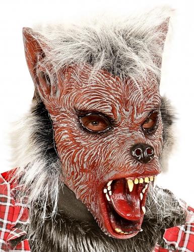 Unheimliche Werwolf-Maske für Kinder braun-grau