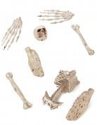 Skelettknochen Deko-Set 8-teilig weiß