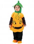 Kürbis-Kleinkinderkostüm Halloween orange-schwarz-grün