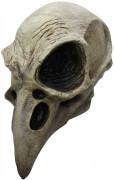 Vogelskelett Maske Halloween Kostümaccessoire beige