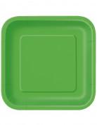 Papptellerset viereckig 14 Stück grün 23cm