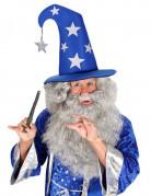 Magierhut mit Sternen Zauberer blau-silber