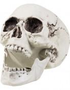 Schauriger Totenkopf Totenschädel Halloween Party-Deko weiss 24x18cm