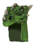 Grüner Drachenhelm Erwachsene