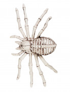 Halloween-Dekoration Spinnenskelett beige 12 x 24 cm