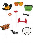Halloween Foto-Set 10-teilig bunt