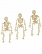 Hängedeko Halloween Skelett Figuren 3 Stück beige 12cm