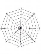 Spinnennetz mit Spinne Halloween-Deko schwarz 200cm